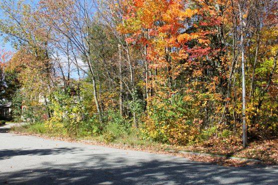 terrain vacant a vendre jacques cartier sherbrooke