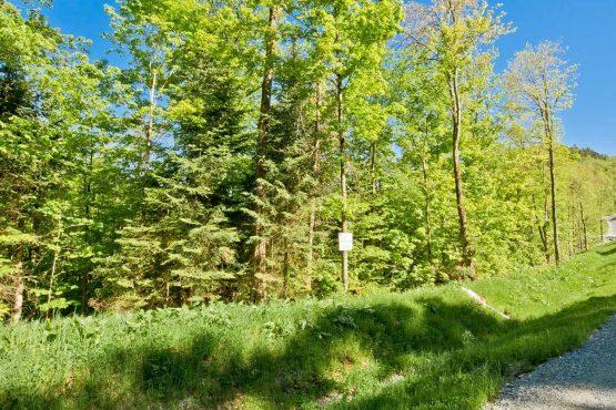 terrain vacant a vendre saint etienne de bolton