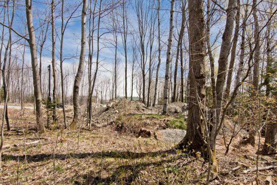 terrain vacant a vendre sherbrooke les nations
